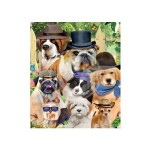 3D LIVELIFE MAGNETS - DANDY DOGS