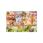 3D LIVELIFE MAGNETS - KITTEN FUN TIME